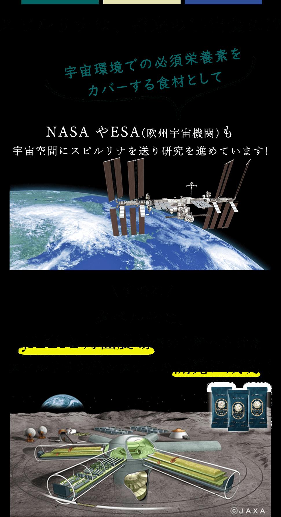 月面でスピルリナ培養システムの開発